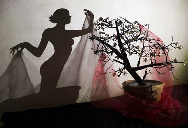Невозможное возможно! Отбрасываемая предметом тень может представлять удивительную художественную ценность. В этой подборке AdMe.ru собрал лучших художников и скульптуров, которые заново открыли загадочный мир теней