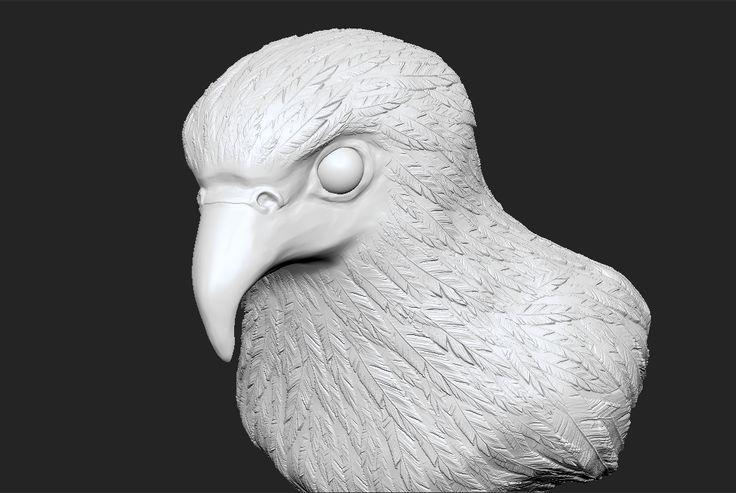 Bird - Sculpting Assignment - Early 2014 | Zbrush, Photoshop