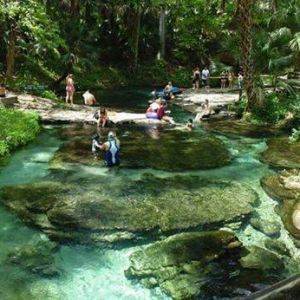 Rock Springs at Kelly Park in Apopka is Central Florida's natural lazy river. Rock Springs produces 26,000 gallons of crystal clear water every minute. Kelly Park features a free-flowing natural spring (68 degrees year round), full-service concession, picnic pavilions and playground.