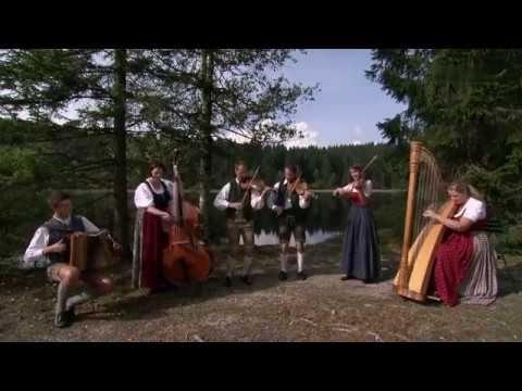 Geigenmusi Kiesenhofer