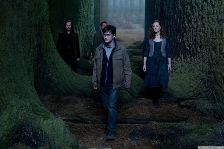 resurrection stone scene | Harry Potter and the Deathly Hallows Part 2: Resurrection Stone