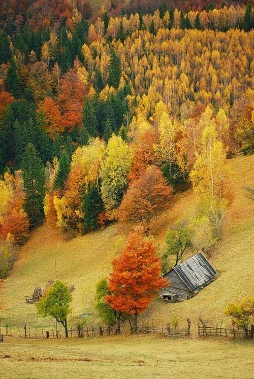 Abandon barn in autumn, Vail, Colorado. Vail Mountain is famous for the best ski slopes in the world. I've been snowed in here many times.