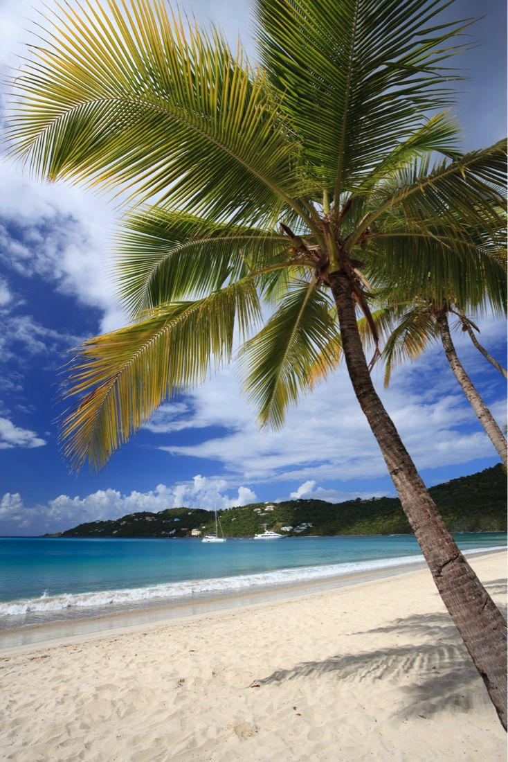 St Thomas Map Virgin Islands%0A Magens Bay Beach in St  Thomas  US Virgin Islands is a pictureperfect mile  of fine white sand lined with palm trees for a perfect honeymoon getaway