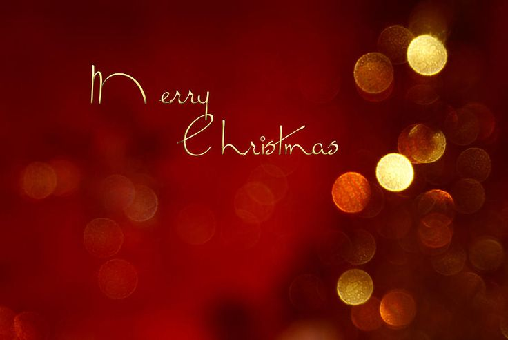 merry christmas cards - Google Search