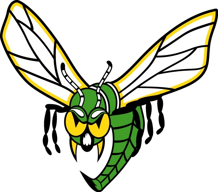 27 Best Images About Hornets On Pinterest Sports Logos