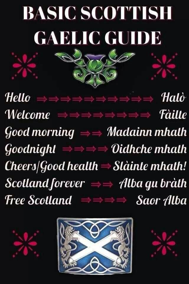basic phrases in Scots Gaelic-- wait ... Have I already pinned this? I must need to go to Scotland