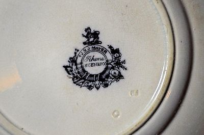 Antique 1800's T.J.&T Mayer Rhone Scenery Ironstone Flow Mulberry/ Black Plate