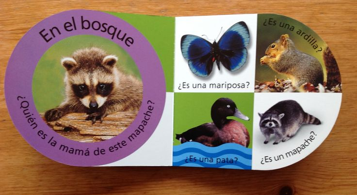 When parents ask me about gifts for Spanish language learners, I recommend this series of books for preschoolers.
