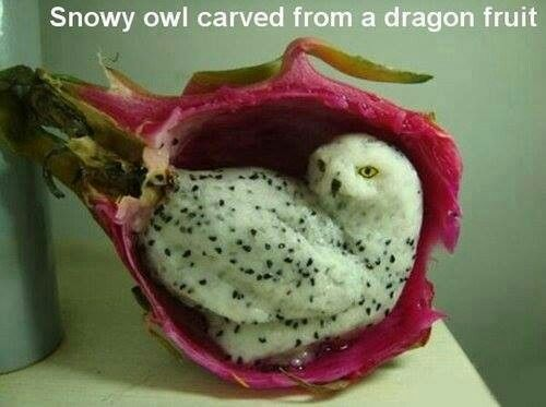 Incredible food sculpture! Snowy owl carved from d…