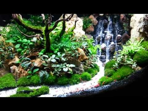 Top 300 best aquascape aquariums youtube fish tanks for Aquarium waterfall decoration