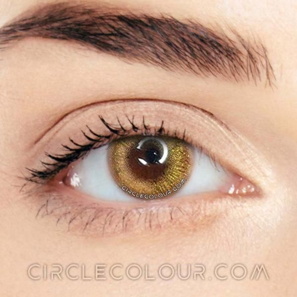 Dream Gold Brown Dream Colored Contacts Lens Mi01336 Kontaktlinsen Farbe Kontaktlinsen Farbige Kontaktlinsen