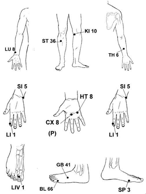 best 25  pressure points chart ideas on pinterest