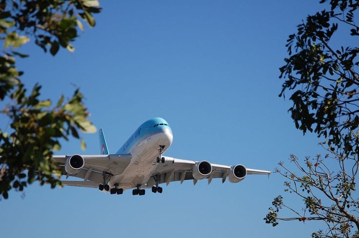 IATA: Air Travel Marks Fastest First-half Growth in 12 Years