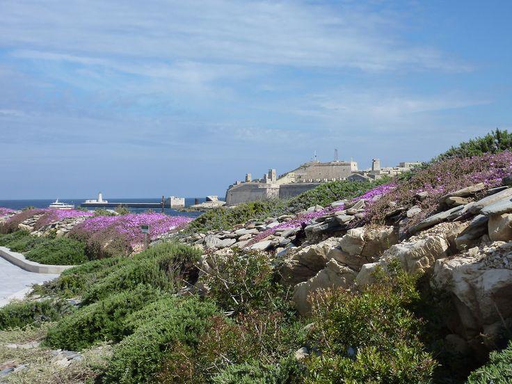 Malta - Skyline of Valletta