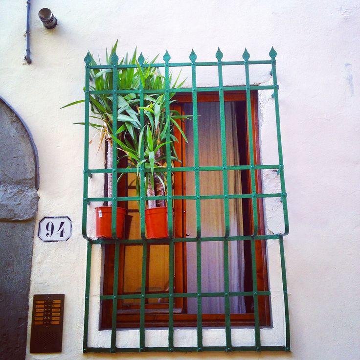 Via Guelfa in Firenze, Toscana http://omnesgreen.tumblr.com/post/91286527382/omnesgreen-italia-firenze