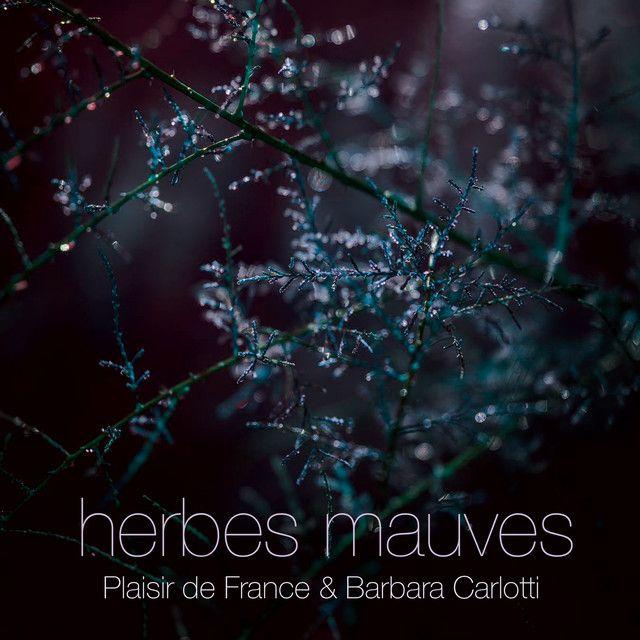 Herbes Mauves | Plaisir De France Barbara Carlotti | http://ift.tt/2pdRmmW | Added to: http://ift.tt/2fSBPQa #indietronic #spotify