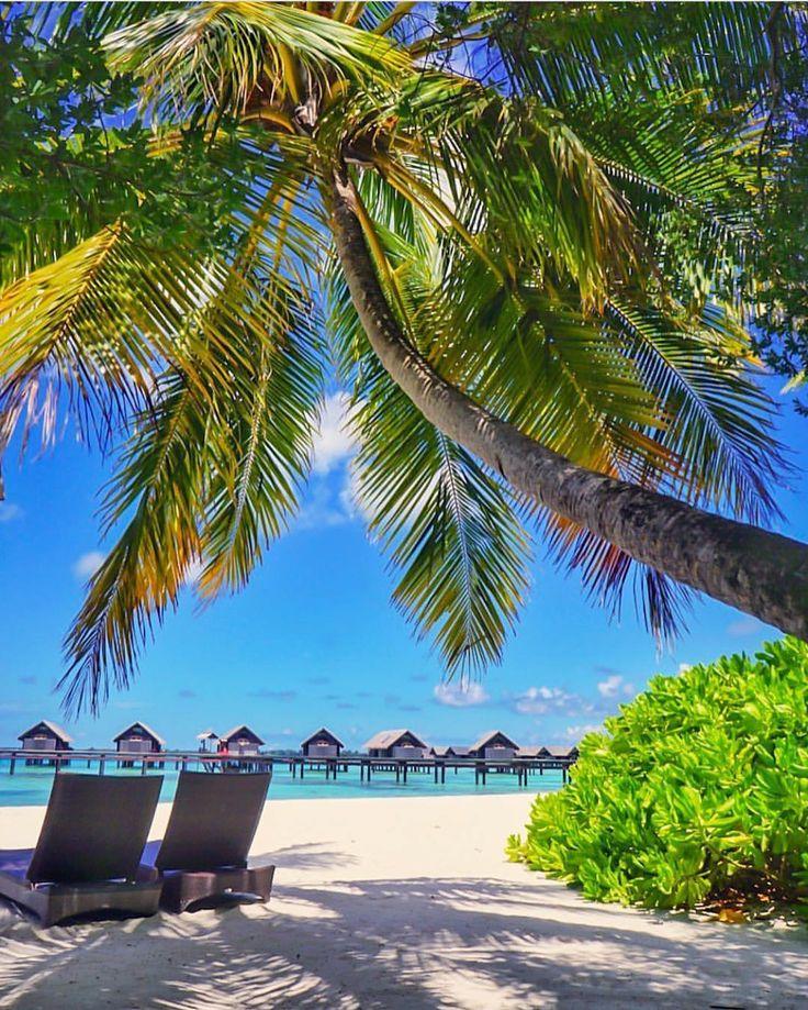 "29.3k Likes, 150 Comments - Beaches N Resorts (@beaches_n_resorts) on Instagram: ""Shangri-La - Maldives  Credits ✨@aysesivil✨ . #beachesnresorts for a feature ❤"""