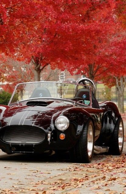 AC Cobra..Re-pin..Brought to you by #HouseInsurance #EugeneOregon Insurance for…  #RePin by AT Social Media Marketing - Pinterest Marketing Specialists ATSocialMedia.co.uk