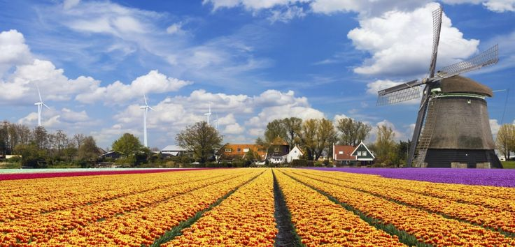 Los atractivos indispensables de los Países Bajos - http://www.absolut-amsterdam.com/los-atractivos-indispensables-de-los-paises-bajos/