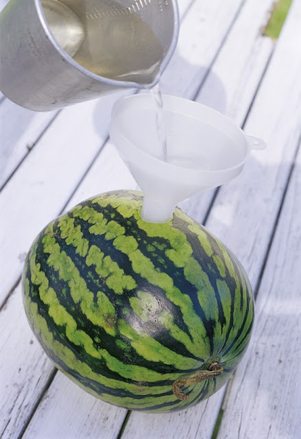 A terrible idea from Sweet Paul Magazine for hot summer days. Open a hole in the watermelon and put a funnel. Pour 2 cups flavored vodka lime. This will make about 2 days to penetrate well into the watermelon. Keep cool in the refrigerator. The results are amazing! Cut the watermelon into slices and serve! .. I Can not wait to TRY this!