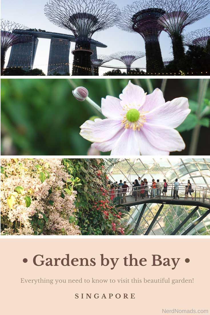 de8babb9c89a9fe8d6a70f6d6b33dc45 - Guide To Gardens By The Bay