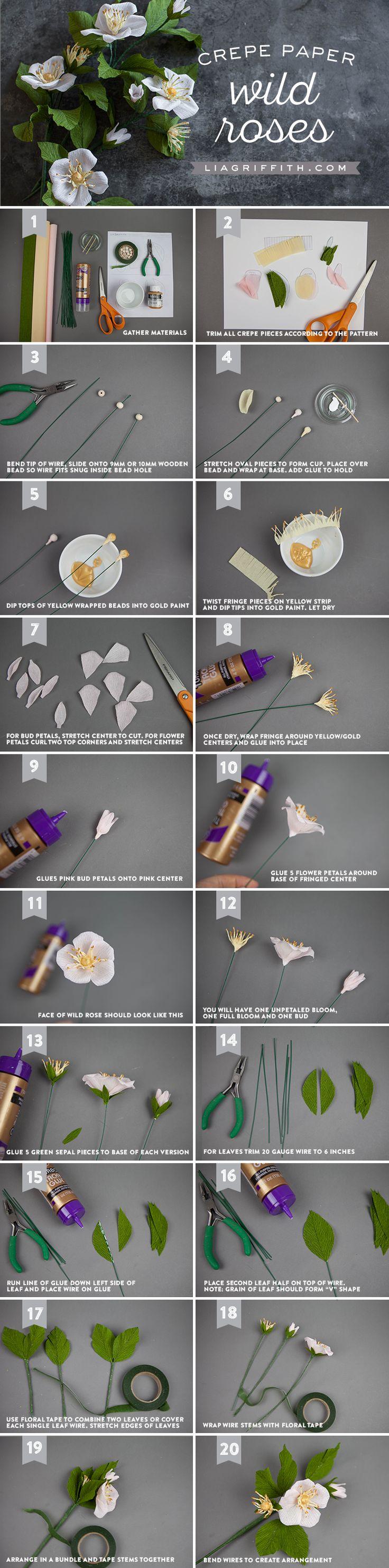 Crepe Paper Wild Rose