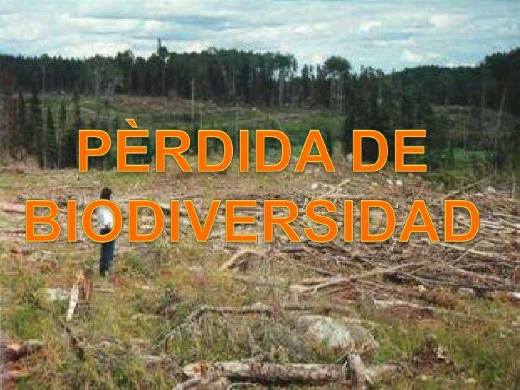 PERDIDA DE LA BIODIVERSIDAD EN ARGENTINA - Perdida de la biodiversidad en la Patagonia