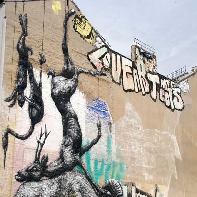 #berlin #roa #kreuzberg #tdckilas