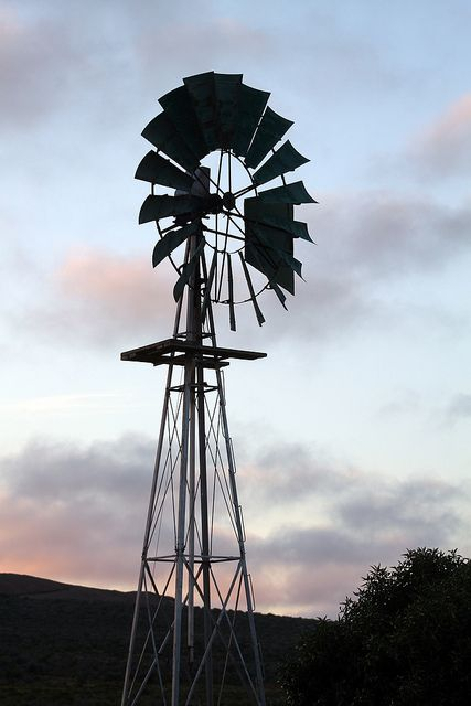 Windmill, Namaqualand