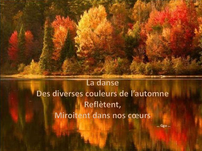 La danse des diverses couleurs....