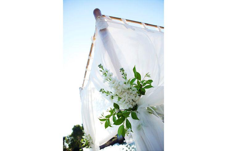 Sunshine Coast Wedding Photography Gallery   Tara Lee Photography