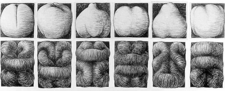 Peter Randall-Page, Individual Exhibitions, 1990 'Fruiting Bodies'