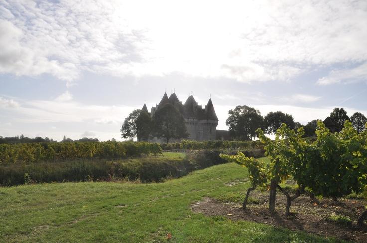 Monbazillac : the castle