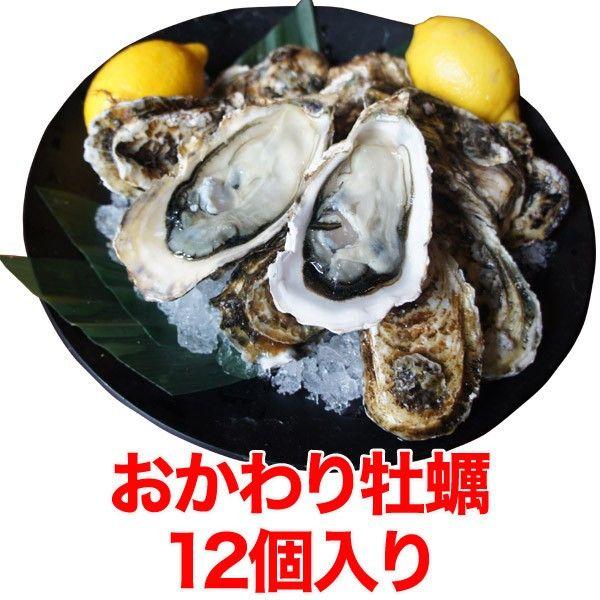 牡蠣おかわりセット(殻付き牡蠣12個)~かき/カキ/産地直送