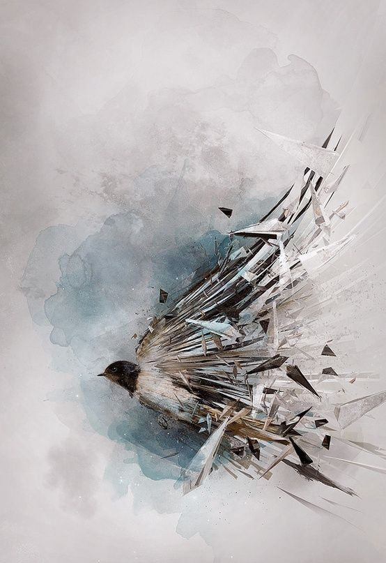 This picture is interesting because there is a bird, but from the body down it is shattered. There are many questions that could be asked about this, and it makes the story behind it even more interesting. I also like the blue and gray in the background. http://www.fromupnorth.com/digital-art-inspiration-594/?utm_source=feedburner&utm_medium=feed&utm_campaign=Feed%3A+FromUpNorth+%28From+up+North%29