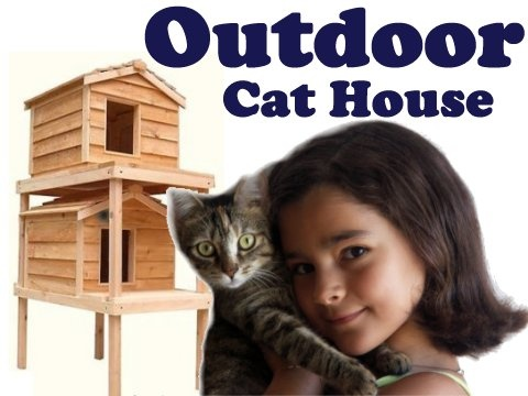 15 Best Images About Cat Houses On Pinterest Cat House
