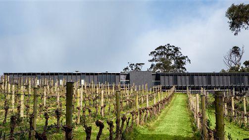 Day Spa + Winery - Brandy Creek Estate - Drouin Estate