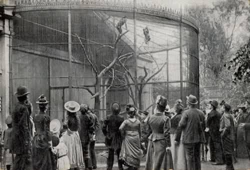 Oude Diergaarde 1895