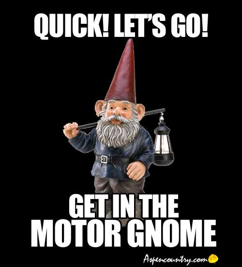 Funny Gnomes: 170 Best Images About Gnome Way! On Pinterest