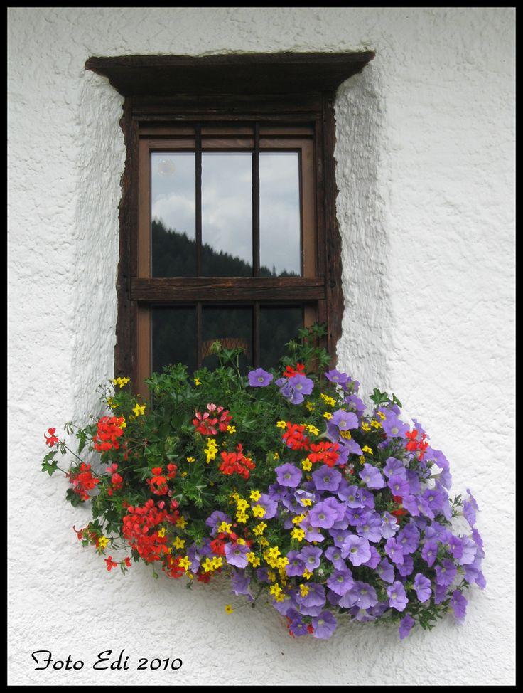 Planter - nice color combination