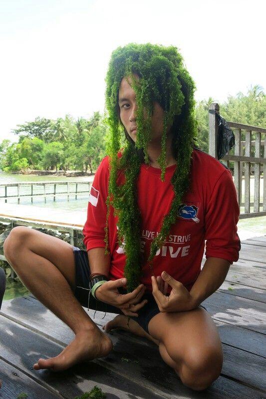 Green Hair! LOL!!