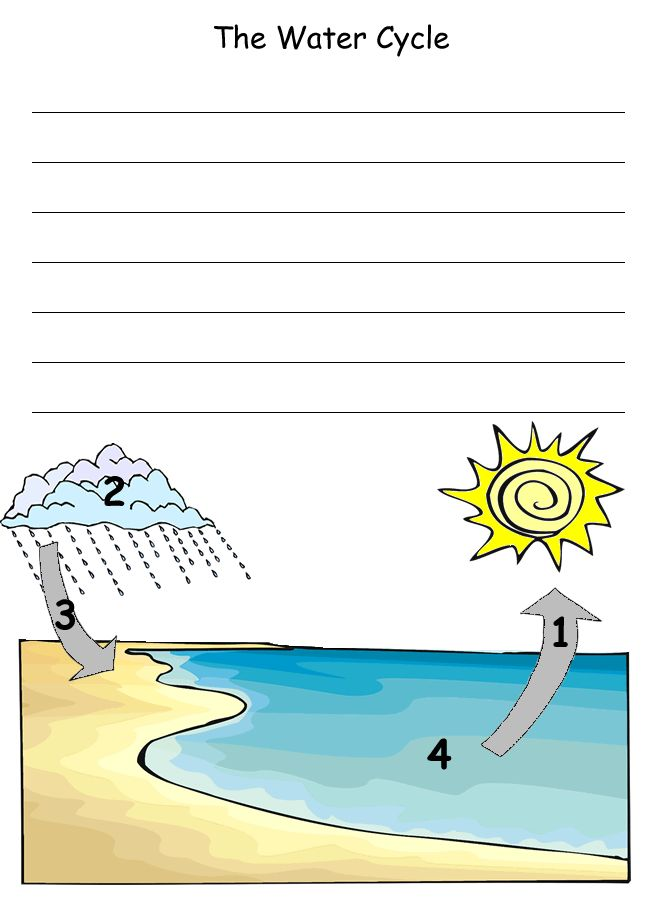 90 best classical conversations images on pinterest homeschool water cycle notebooking page ccuart Gallery
