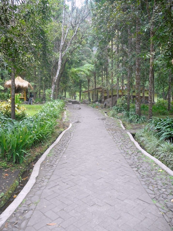 A path to Coban Rondho Waterfall #Malang #EastJava #Indonesia