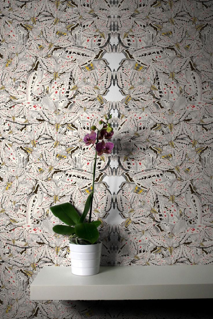 White Moth Allover Solid Wallcovering | Timorous Beasties