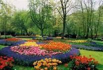Flower Bed Designs - Bing Images
