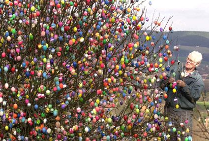 In his childhood (around 1945) Volker Kraft saw a beautiful paschal decorated tree in his home town. So he wanted a tree like this.  http://www.eierbaum-saalfeld.de/?seite=geschichte=eng
