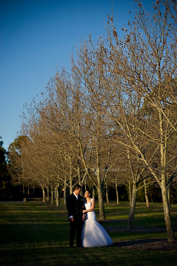Olympic Park Search Results Sydney Wedding Photographer Vincent Lai