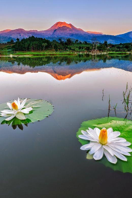 Mindanao, Philippines #traveldreams2016 #wainomi #travelblog