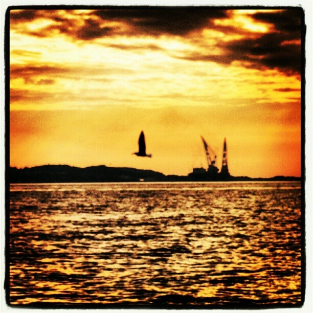 Photo by synnove1978 Sunset Stavanger Norway
