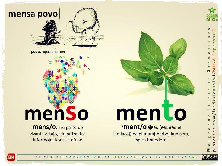 menSo X menTo #migo #vortaro #gramatiko #esperanto #cerbo #menso #mento #herbo